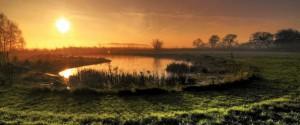 natuurbegraafplaats-grafmonumenten-www-gedenkstenen-grafmonumenten-nl